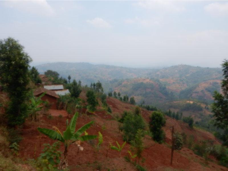 プロジェクト地域